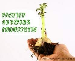 Exciting Jobs in the Fastest-Growing Industries
