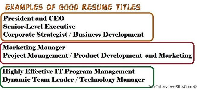 what is a resume title what is a good title for a resume - Examples Of Good Resumes