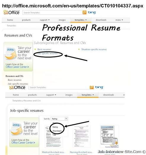 Job Interview U0026 Career Guide  How To Format A Professional Resume