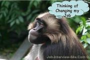 thinking-of-changing-jobs